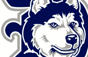 Huskies D head 2768 grey.eps