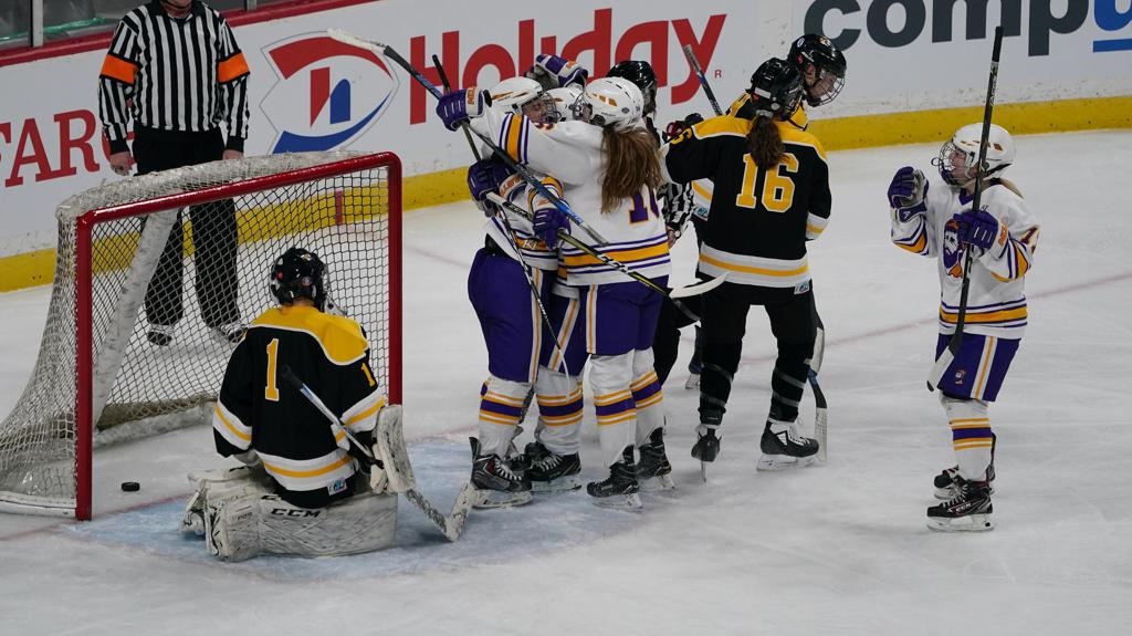 Cloquet-Esko-Carlton players celebrated after  forward Dana Jones (4) scored in the first period.       ]  Shari L. Gross ¥ shari.gross@startribune.com        Warroad defeated Willmar 7-4 in a State Tournament quarterfinal game at the Xcel Energy Center in St. Paul, Minn., on Wednesday, Feb. 19, 2020.